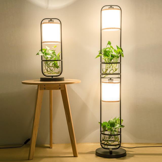 light with plants