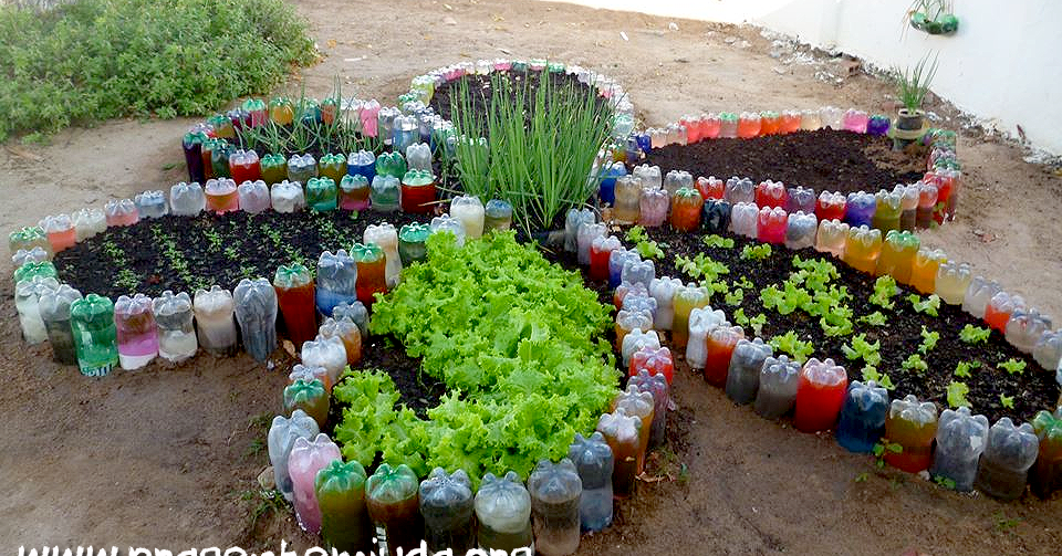 Vegetable Garden Ideas Layout Beautiful