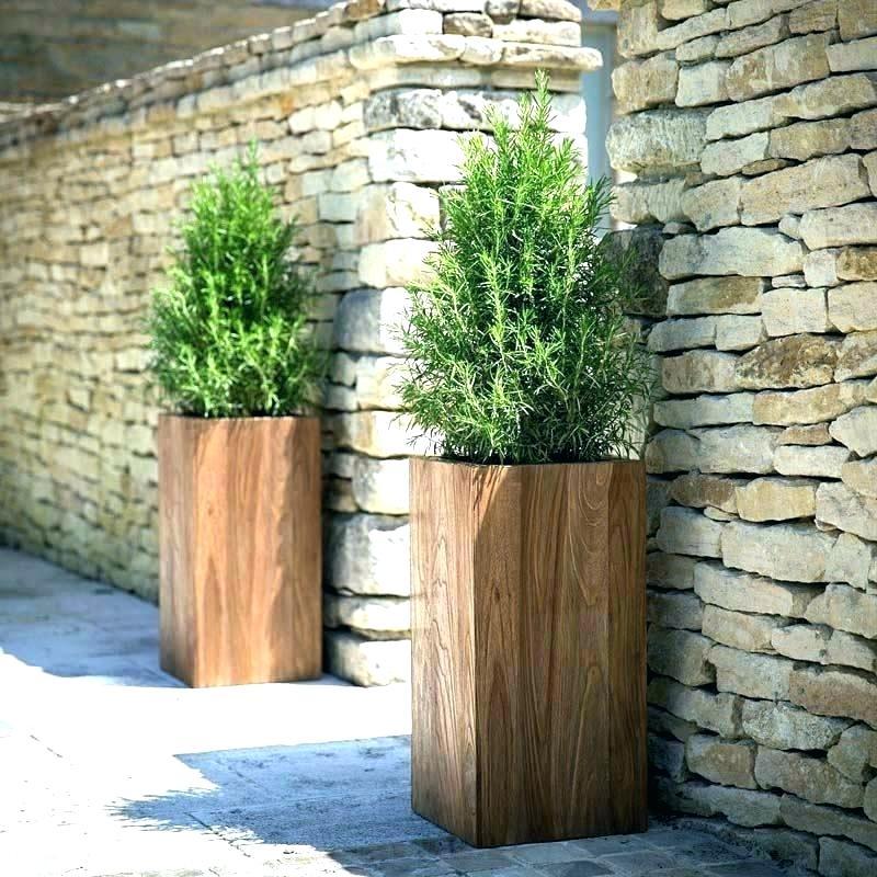 front door pots