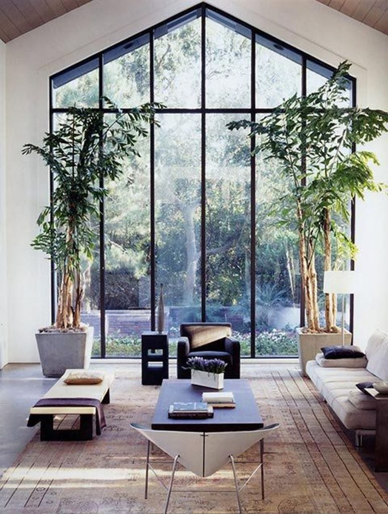 amazing glass walls