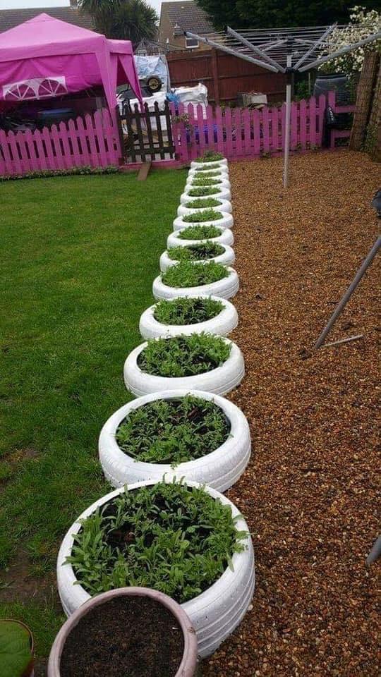 garden edging made of tires