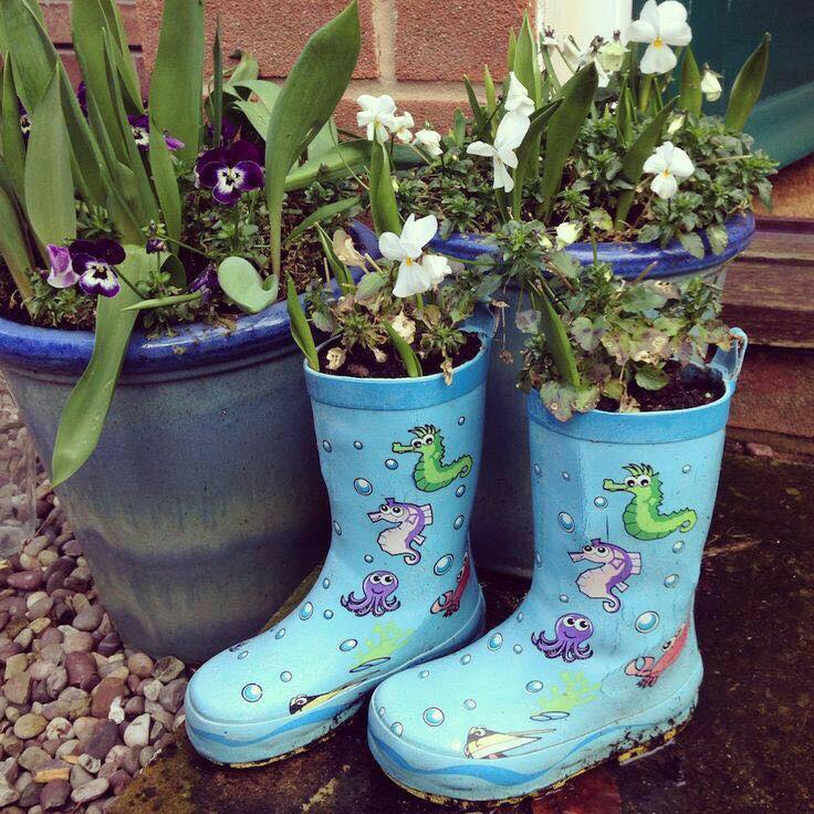 boots planter