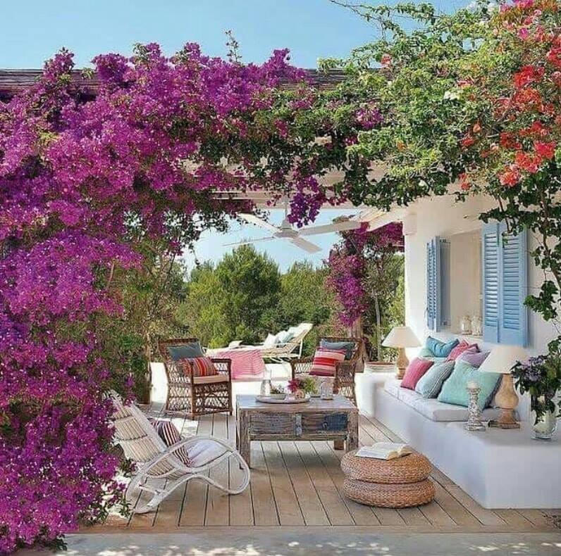outdoor design with purple flowers