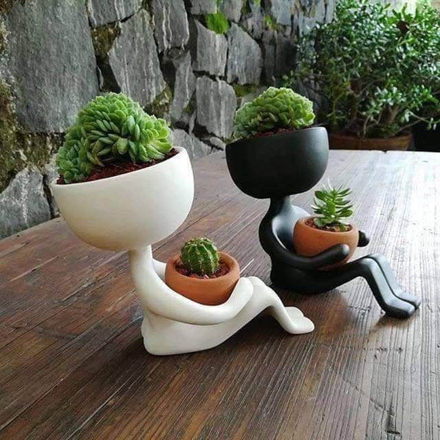 creative flower pots