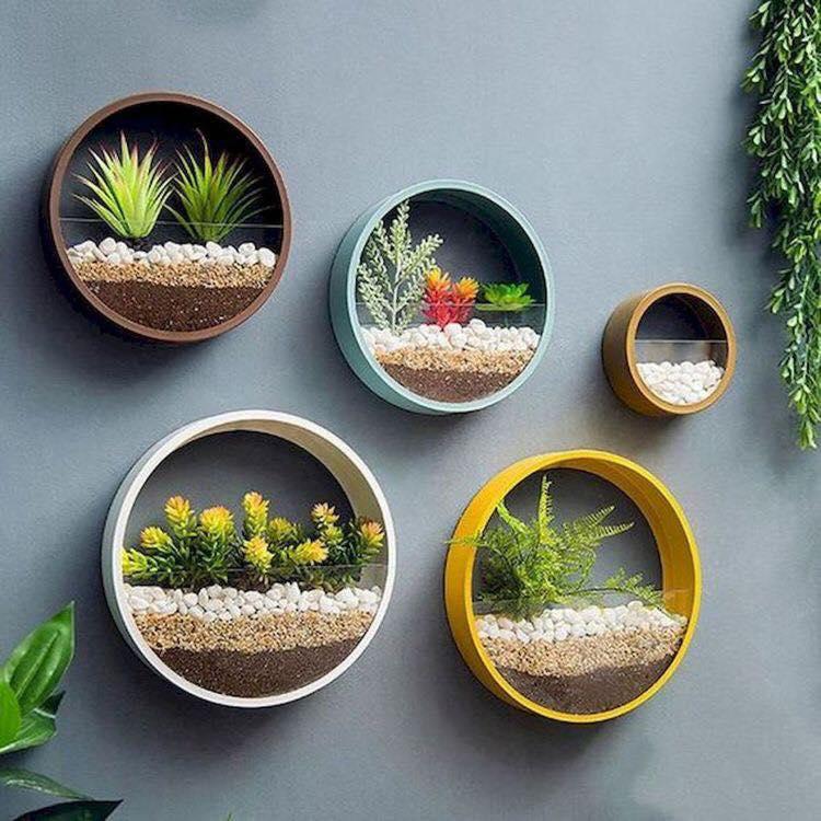 hoop planter