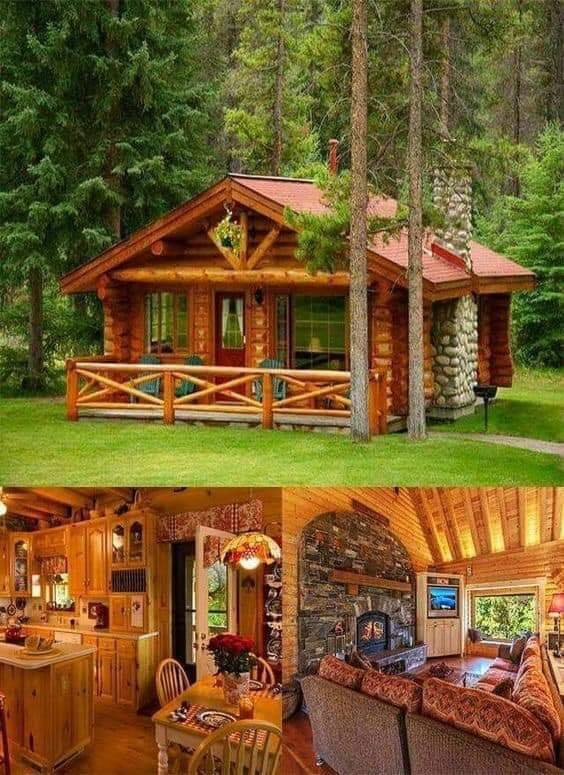 wood log house