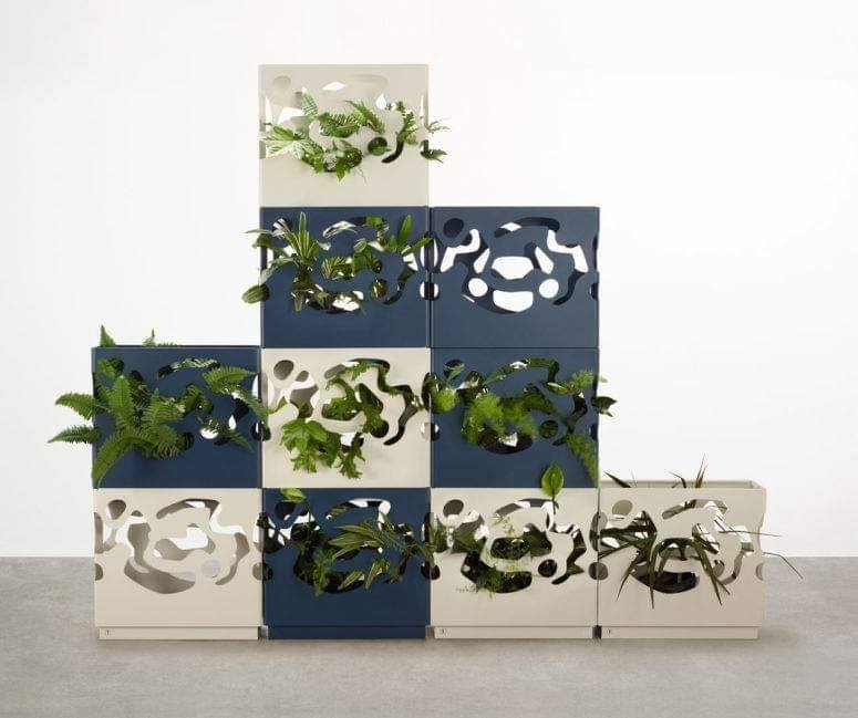 box planters