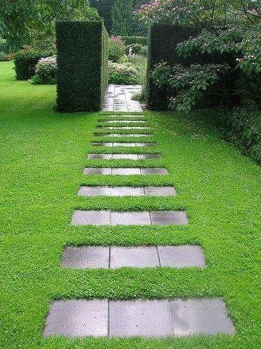 lovely pathway