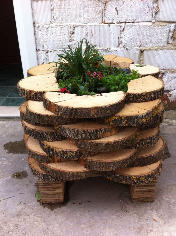 wood slice planter