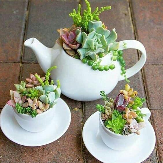 tea cup reuse